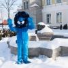 Sinine Lõvi ootab mängima